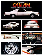 1977 Pontiac LeMans Can Am Ad